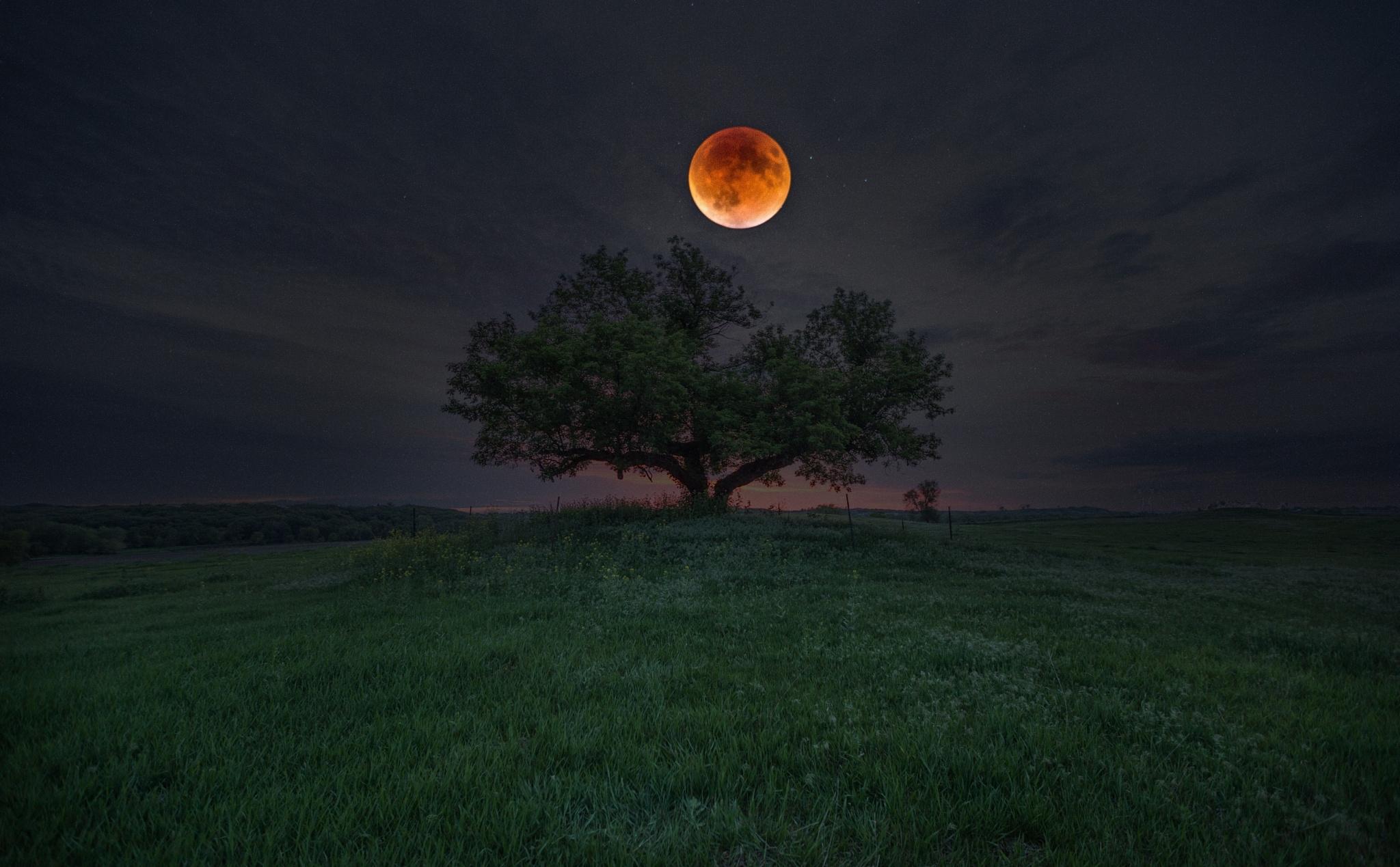 gece ay ile ilgili görsel sonucu