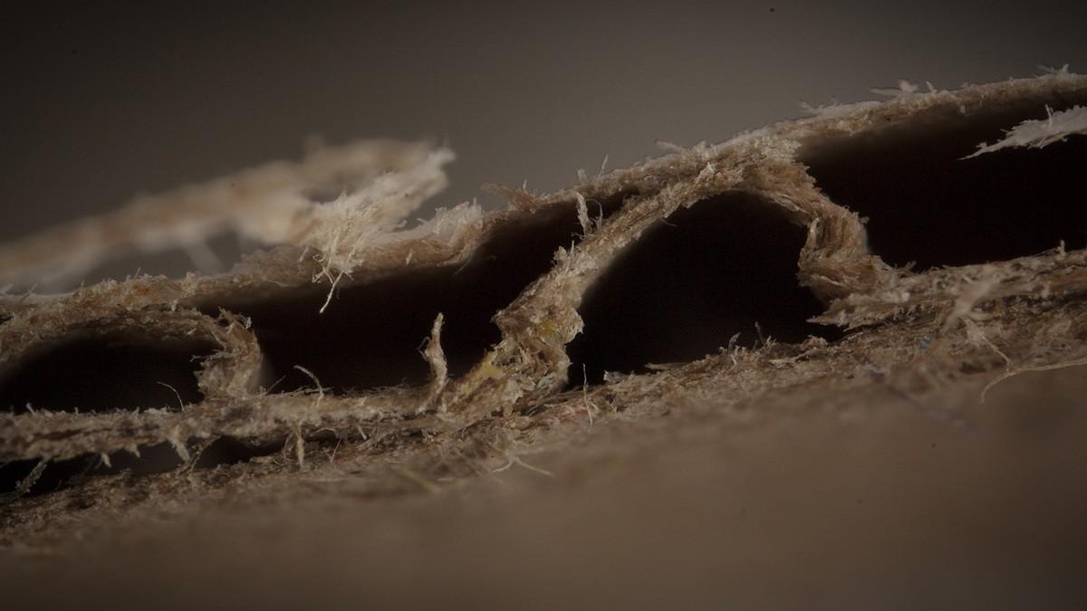 Corrugated-Cardboard