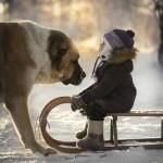 Elena Shumilova - fotoğrafçı ustası 77