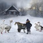 Elena Shumilova - fotoğrafçı ustası 20