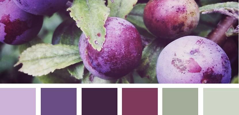 Doğadan Tasarımcılara İlham Veren Renk Paletleri
