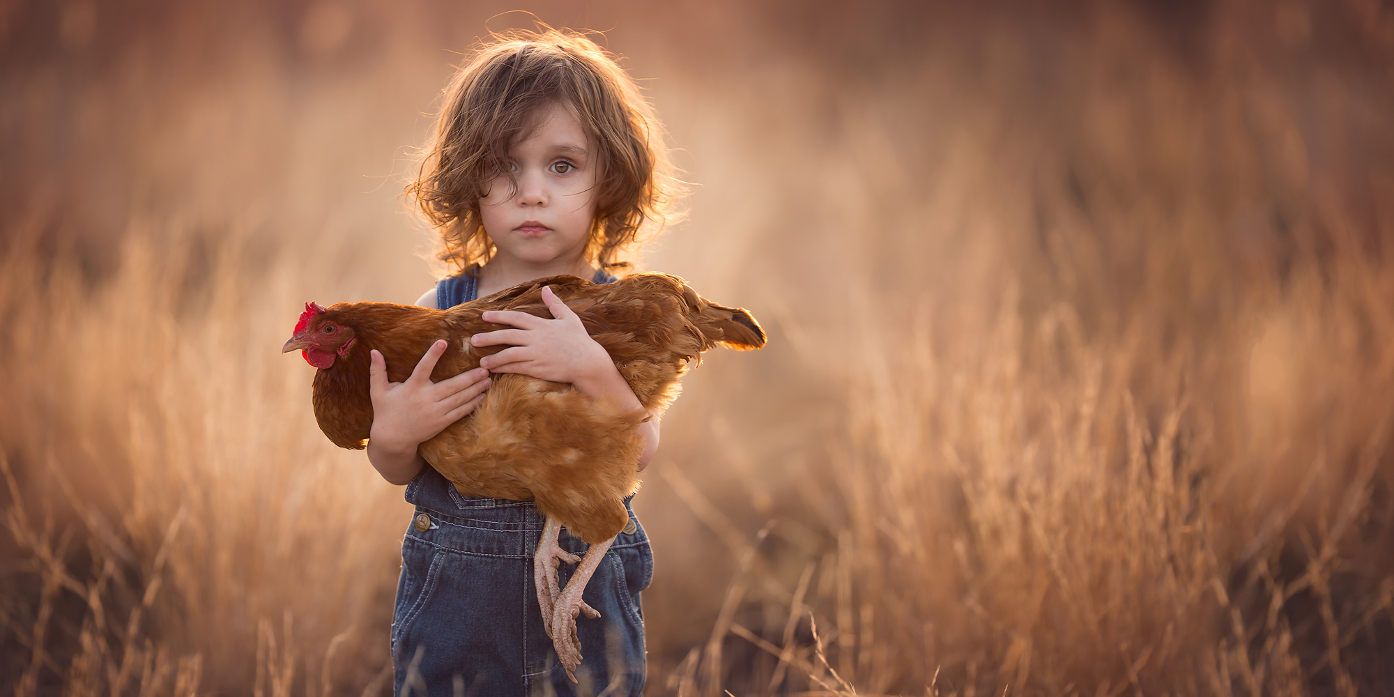 Copyright: Lisa Holloway