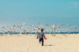 çocuk kuş
